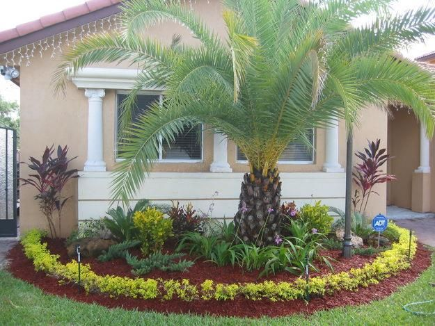 486 best tropical florida gardening images on pinterest for Florida landscape ideas front yard