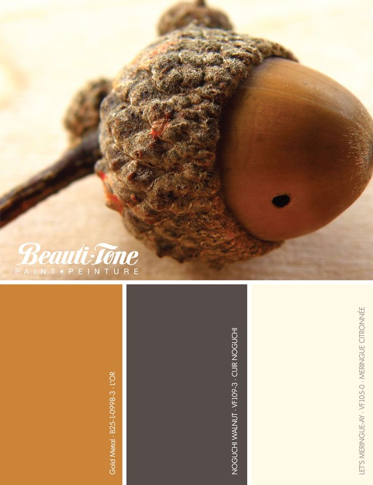 The Fashion #colours of #Fall are a great way to bring new life to your home.