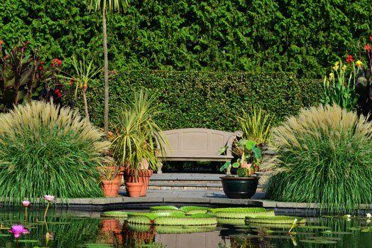 Aquatic Garden - The Gardens at Wave Hill || Wave Hill - New York Public Garden and Cultural Center
