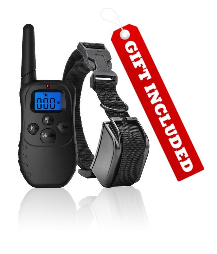 Dog Shock Collar with Remote   FREE Training Clicker – 3 Mode Dog Training (sound, vibration and shock) – Save Money with Rechargeable Batteries – [Clicker   Shock Collar= Faster Results] -- See this awesome image  : Dog Training and Behavior Aids