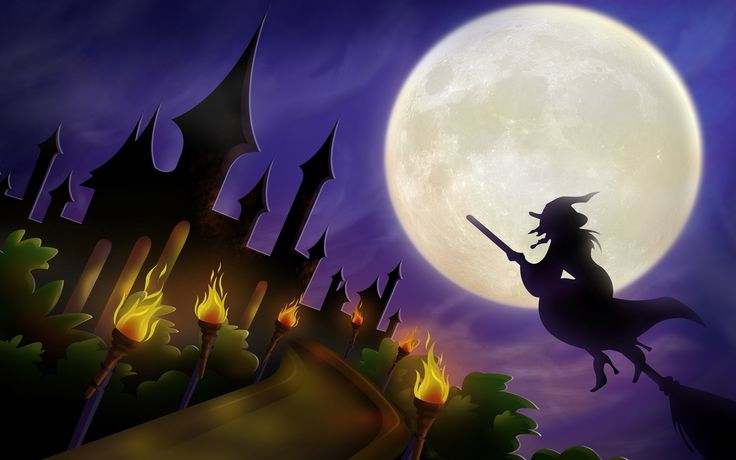 Halloween Witch On Broom Wallpaper