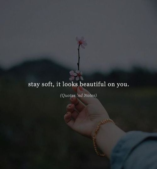 BEST LIFE QUOTES    Stay soft, it looks beautiful on you. —via https://ift.tt/2eY7hg4