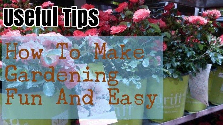 Growing An Organic Garden: Tips And Tricks – Gardening Tips