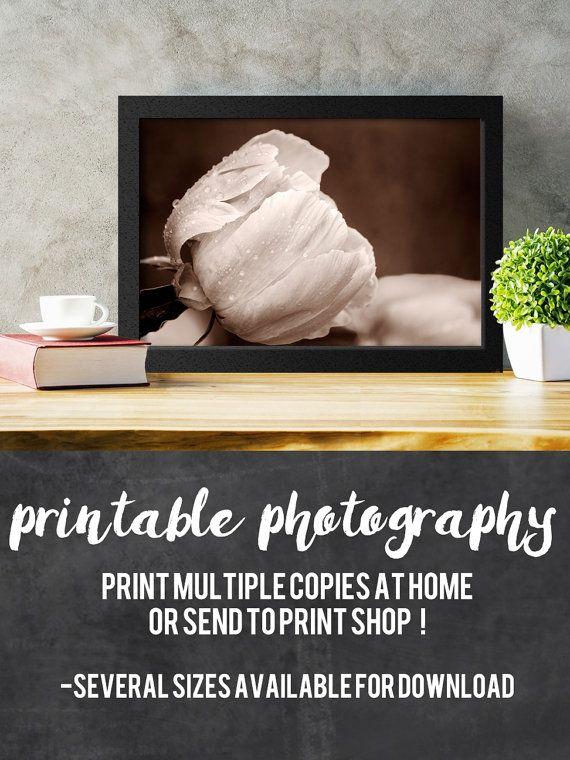 Printable Sepia Peony Photograph by Playful Pixie Studio.  Print for home decor or as a gift. #peony #printable #sepia