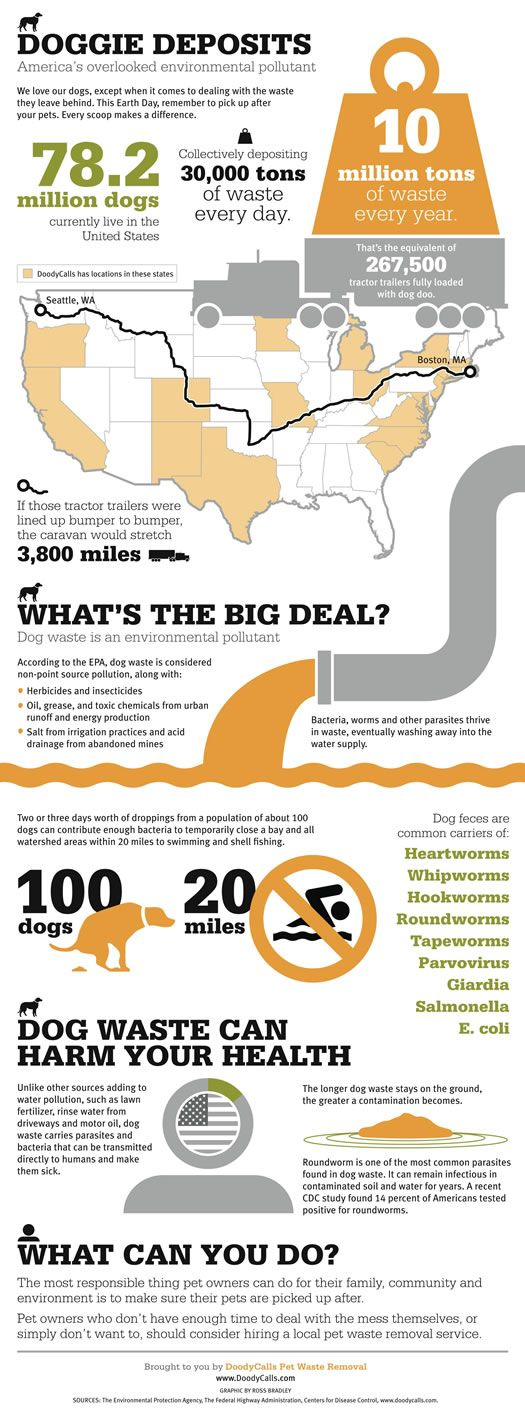 """Earth Day 2012 Infographic - 10 million tons of pet fecal matter every year. Locate a pooper scooper pet waste pick-up and removal company near you to cleanup your backyard and you can enjoy it without having to do the """"doody"""" work. All About Doody is located in Houston, TX."""