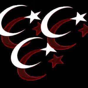 Siyah Türk Bayrağı resimleri 6