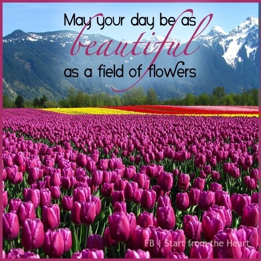 Inspirational Quotes About Positive: Beautiful Day Like Field Of Flowers Quote Via Start From