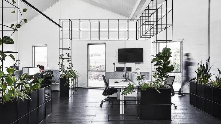 See how greenery adds warmth and texture to this monochrome office space.