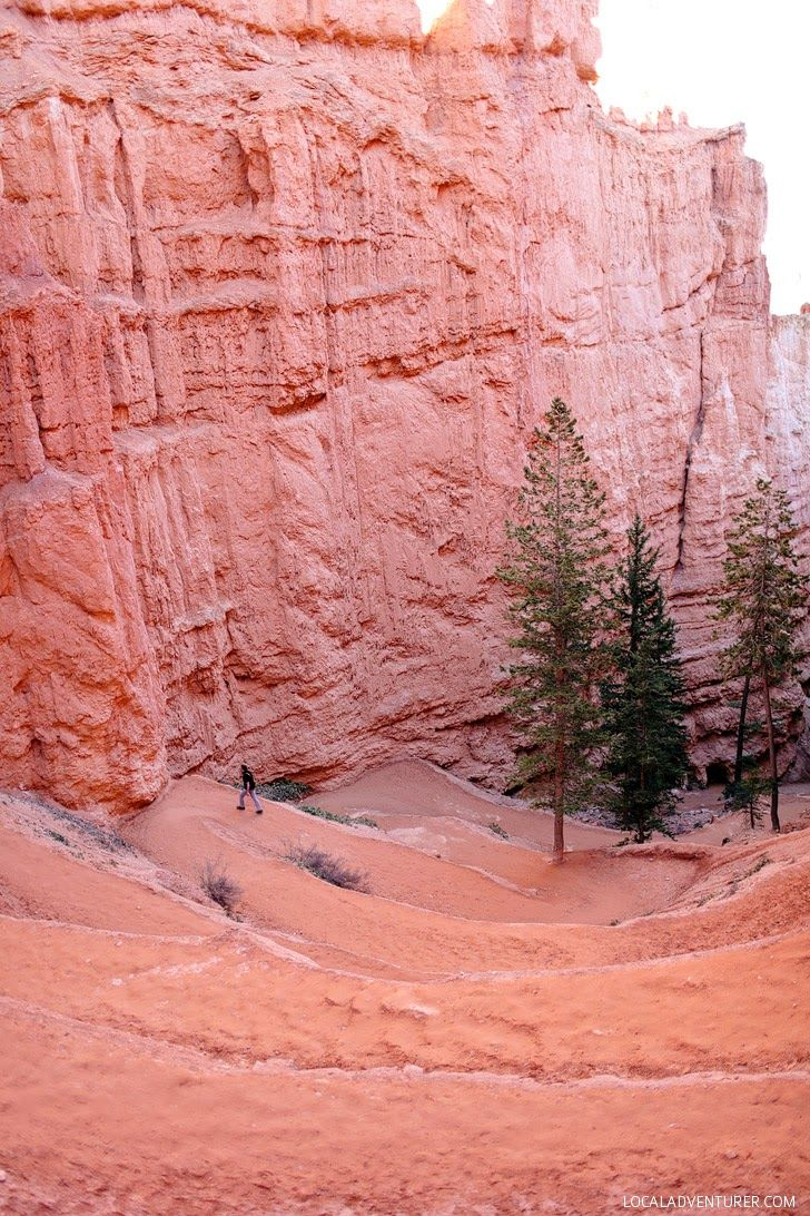 Navajo Loop Trail (9 Things to Do in Bryce Canyon National Park).