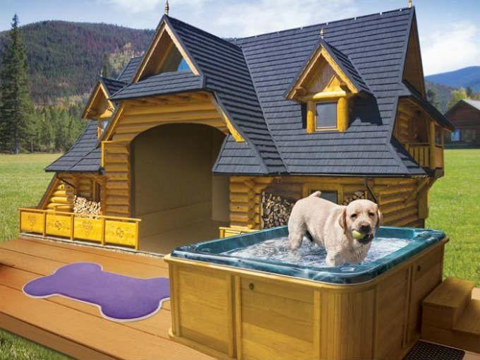 12 casas de perros que están mejores que la tuya | Gamedots