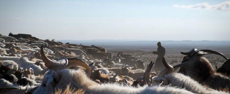 """Elmúlt+a+tél.+a+Gobi-sivatagban+a+hőmérséklet+–+30+fok+fölé+emelkednek.+Ha+nem+lesznek+csúnya+meglepetések,+a+mongol+pásztorok+fellélegezhetnek. Mint+a+bolygó+más+extrém+régióiban,+Mongóliában+is+felgyorsult+a+felmelegedés+ritmusa.+""""Az+utóbbi+70+évben+a+hőmérséklet+2,1…"""