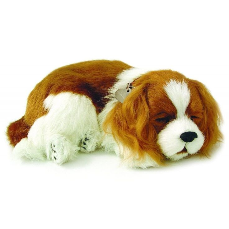 Perfect Petzzz The Original Breathing Huggable Pet Cavalier King Charles King Charles Puppy Pet Tags Sleeping Dogs