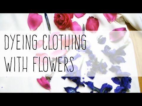 Dyeing clothing with flowers   Verena Erin
