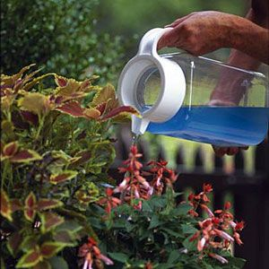 Overfertilizing | Home Gardening Tips - Southern Living Mobile