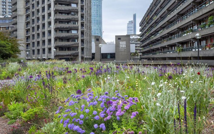 London's city gardens at the Barbican