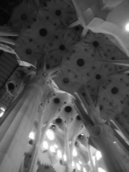 """Inside """"La Sagrada Familia"""" - by Gaudi. I was absolutely enthralled. Columns that look like flowers and tree trunks. I must have explored the church for at least 3 hours...."""