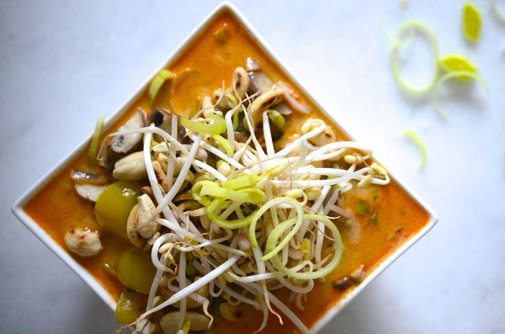 Ah, curries. Ik kan er niet genoeg van krijgen! Vooral tijdens de koude maanden. Hiereen lekker receptje met volkoren rijstramen en rode currypasta. So hot & tasty!