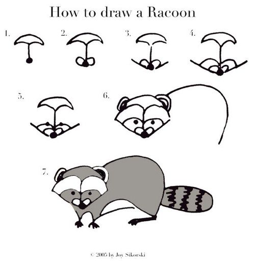 how to draw a cartoon raccoon face step by step