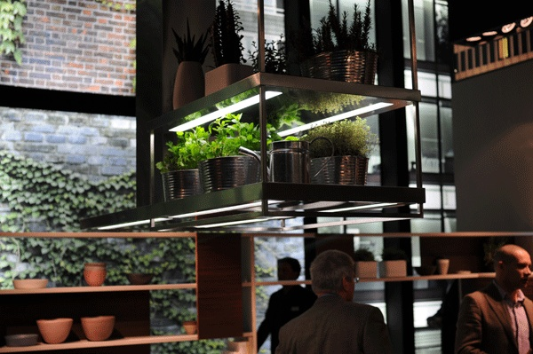 grow lights lights for kitchen and herbs on