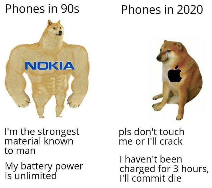 Then Now Dog Meme Funny Memes Funny Relatable Memes Stupid Funny Memes