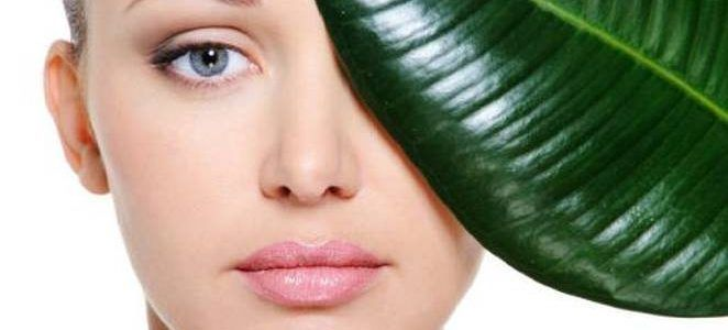 Ayurvedic Tips for Skin Care and Glowing Skin