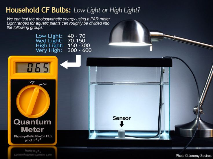 Prefect explanation on PAR values of Spiral Power Saver Bulbs, lighting question -
