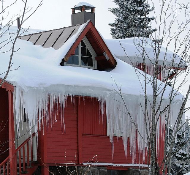ice has still got a grip~