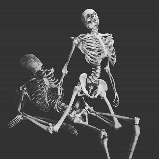 skeletons love