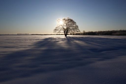 Hokkaido(Japan)