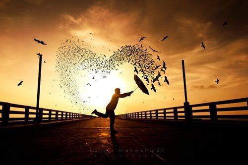 """Risultati immagini per """"Ogni persona che conosci nella vita è una foglia che arricchisce il tuo albero. Molte si perdono col vento, altre non si staccheranno mai"""