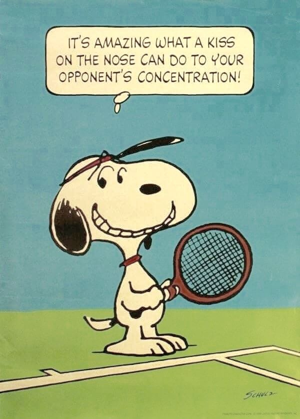 Sweet Distraction | Tennis quotes, Snoopy, Tennis