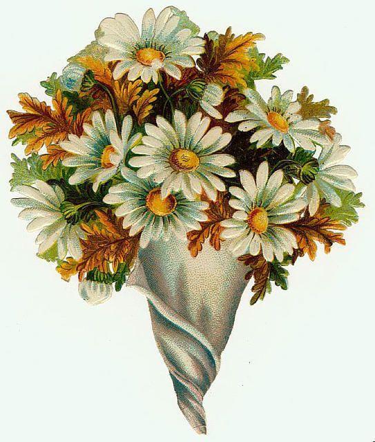 Flowers555