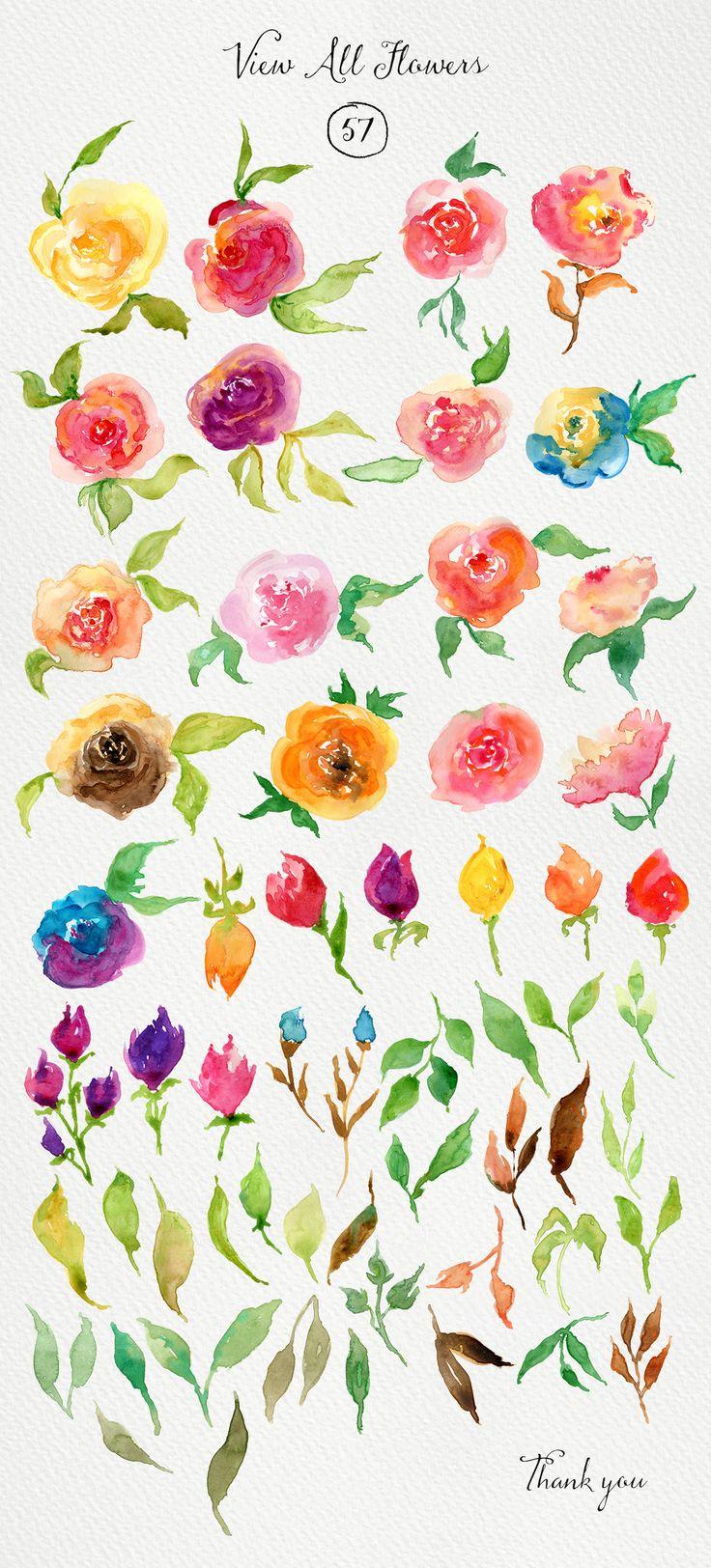 Watercolor Roses DIY by Webvilla on Creative Market