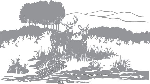 glass etching templates for free - glass etching stencil of two deer in a field in category
