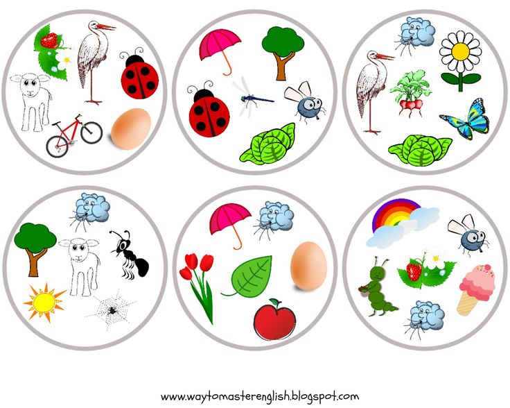 Już od dłuższego czasu uczymy się z uczniami o wiośnie (owadach i innych zwierzątkach, roślinach i cyklu ich życia, pierwszych owocach i war...