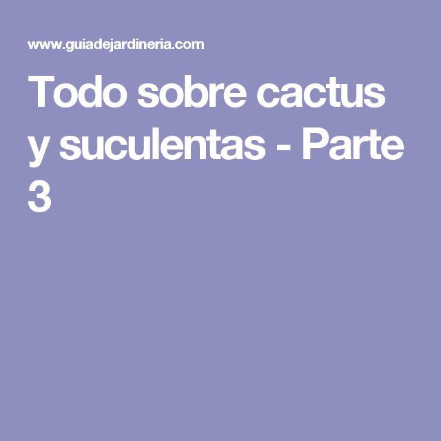 17 mejores ideas sobre cactus y suculentas en pinterest for Informacion sobre el cactus