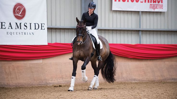 Carl Hester shows you how to step up your horse's training and add sparkle in the ring