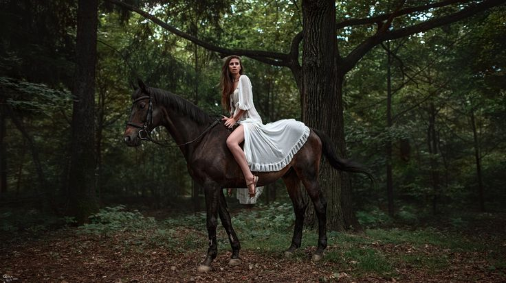 mulheres, cavalo, passeios a cavalo, floresta, vestido branco