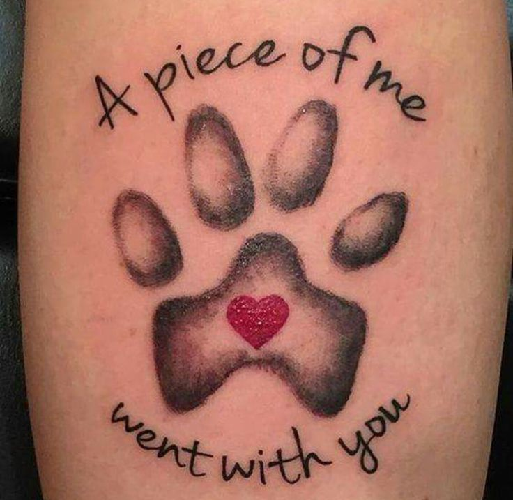 In Memory of all our Hounds.Tattoo A piece of me went with you! ❤  From Viv Hitchman. I Love My Basset Hound 21 September 2015
