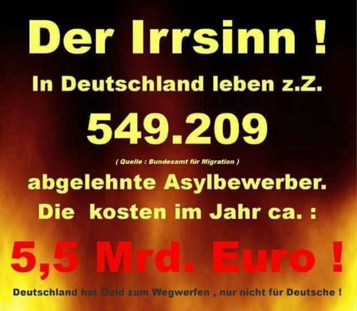 Der Irrsinn! In Deutschland leben zur Zeit 549.209 ABGELEHNTE Asylbewerber. Das kostet im Jahr ca. 5,5 MILLIARDEN Euro!