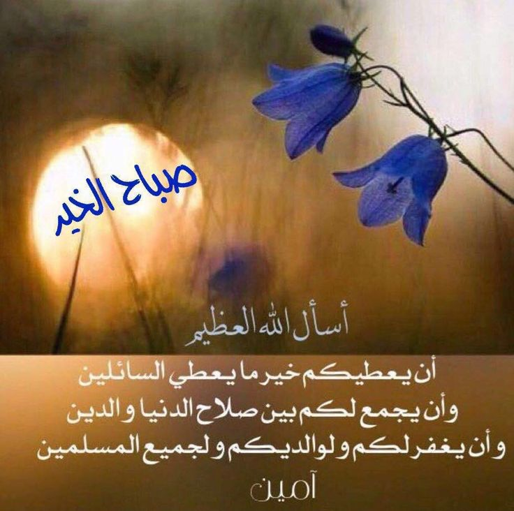 Good Morning Quotes Allah : Best  images on pinterest mornings