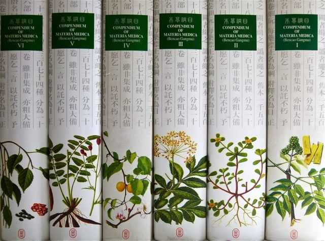 how to learn herbal medicine