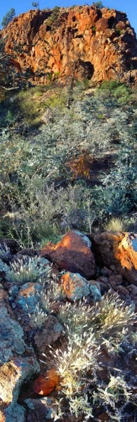 Arkaroola Pinnacle - 125x51cm Pigment ink on photographic paper. Richard Morecroft, Bungendore Wood Works Gallery 2012-13