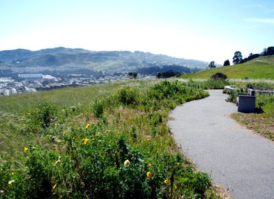 A Sage New Trail In McLaren Park | Health + Heart | PureWow San Francisco