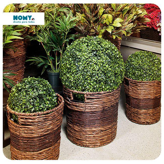 Aunque el espacio sea mínimo, una buena decoración puede crear un ambiente interesante, lleva el verde a tu balcón ¡y dale más vida!