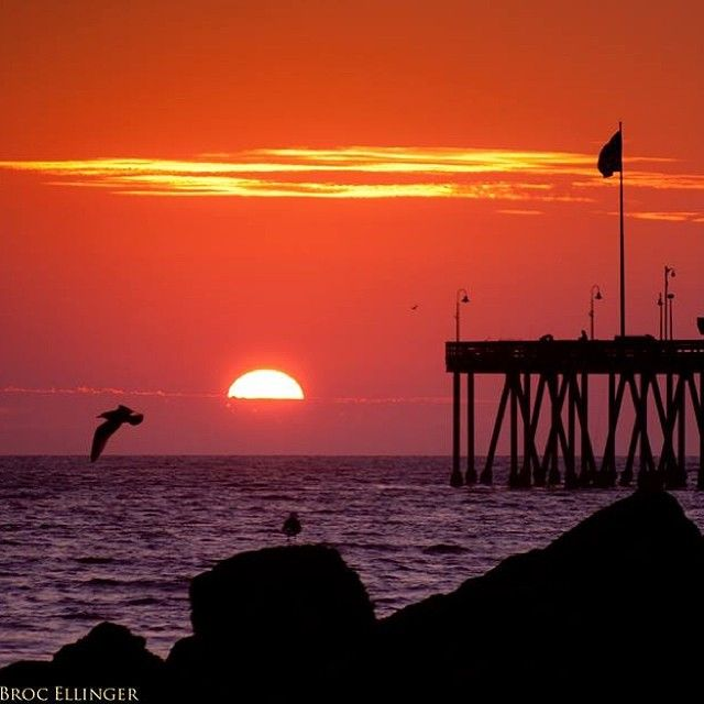 Ventura pier ventura california image by local for Ventura pier fishing