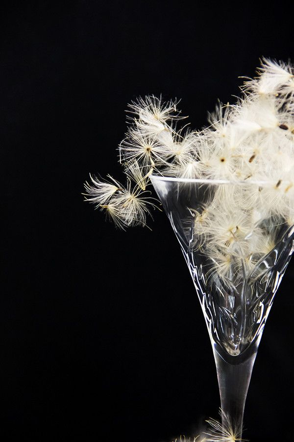 Glass of Wishes by Parissa Allahyari on 500px