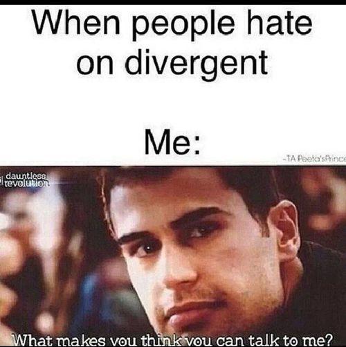 @Lauren Davison Davison Teal , people who hate in Divergent are Pansycake's.