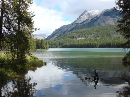 Two Jack Lake Campground Banff National Park