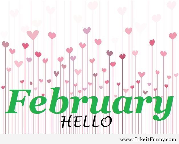 Hello february Funny Picture